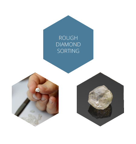 Rough diamond sorting